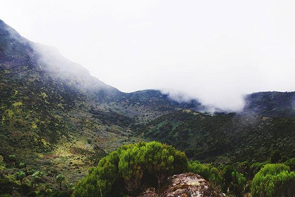 Mount Kenya im Nebel